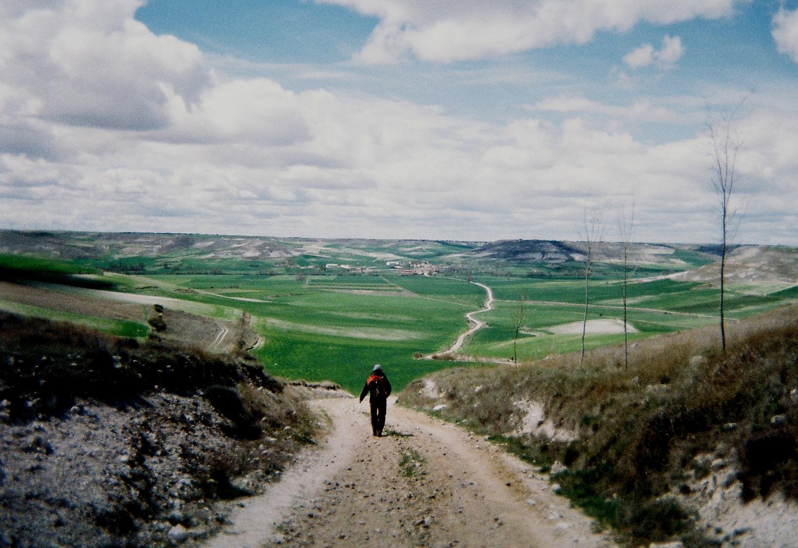 Camino-Road-Pic.jpg